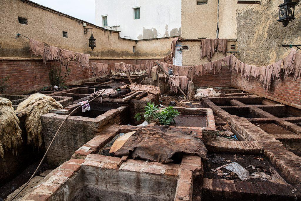 garbarnia w Tetuan,Maroko