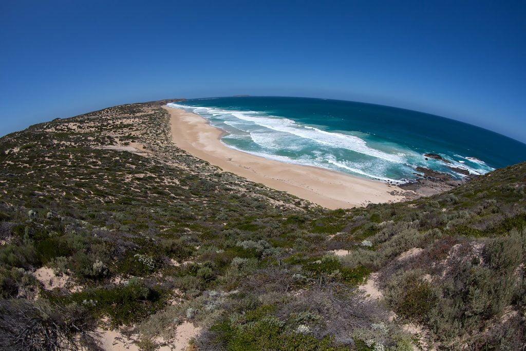 ocean,fale,wybrzeże,plaża