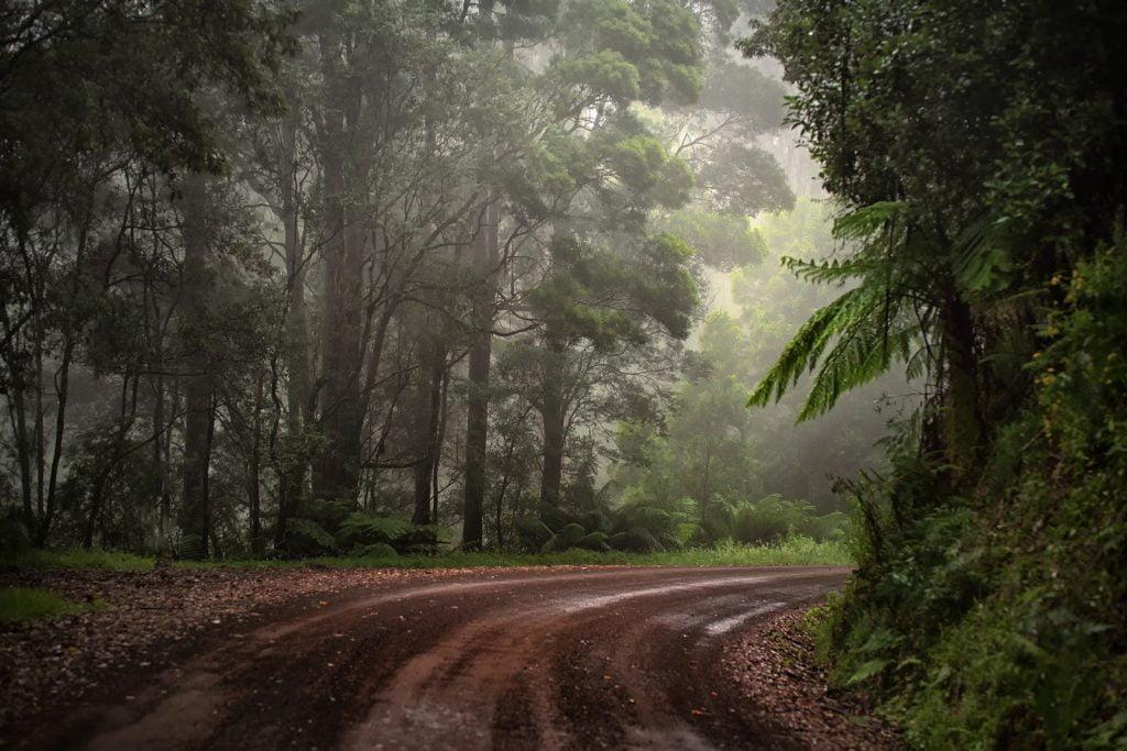 Las  Otway,Great Ocean Road